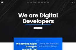 WIELDY DIGITAL LTD